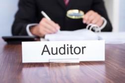 Новшества в ФЗ «Об аудиторской проверке»